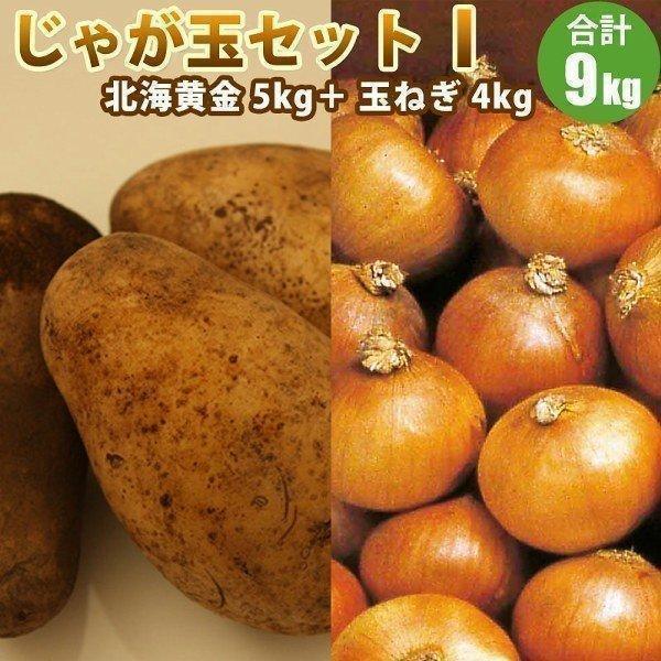北海道 じゃがいも たまねぎ のじゃが玉セットI 北海黄金 L/2L 5kg 玉ねぎ 4kg 【新じゃがいも】