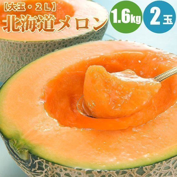 北海道メロン 1.6kg×2玉 赤肉メロン 北海道 メロン 果物 お取り寄せ ギフト 贈答品 贈り物 フルーツ 果実 果物 お中元 御中元 夏ギフト 暑中見舞い