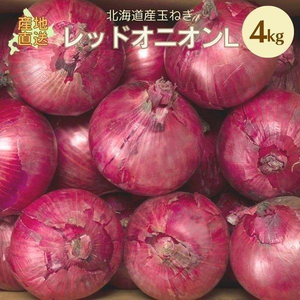 レッドオニオン 4kgL 北海道 たまねぎ ギフト 野菜 北海道産 お礼 御祝 お取り寄せ 産直 内祝 玉葱 敬老