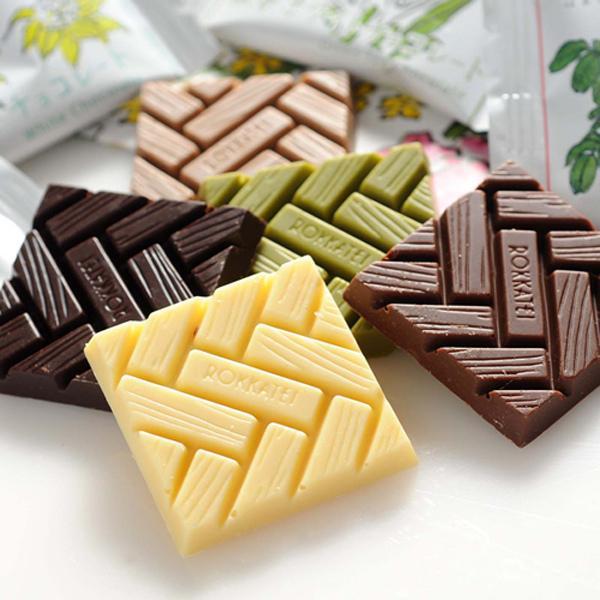 六花亭 チョコレート 5枚入 スイーツ お取り寄せ 北海道 お土産 hokkaido-omiyage