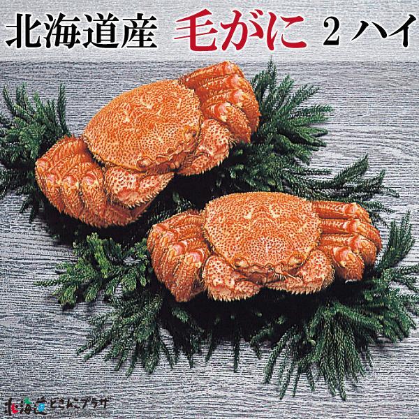 産地出荷「北海道産 毛がに 2ハイ」冷凍 送料込