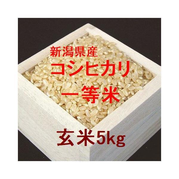 新潟県産コシヒカリ 一等米 玄米5kg (令和2年産)