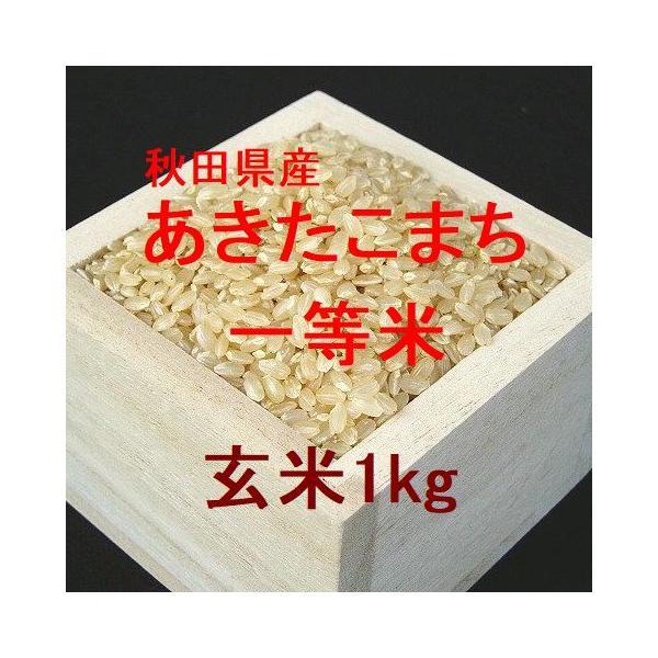秋田県産あきたこまち 一等米 玄米1kg (令和2年産)