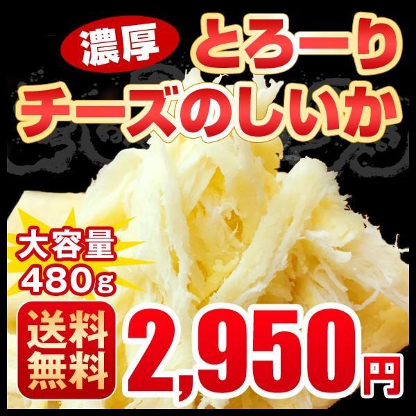 おつまみ 送料無料 チーズのしいか 大容量480g(160g×3) チーズ いか 珍味 北海道 常温 ワイン