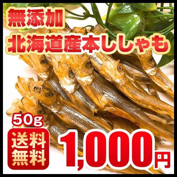 おつまみ 送料無料 ししゃも 寒干し 北海道産 50g 珍味 無添加|hokkaimaru
