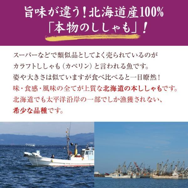 おつまみ 送料無料 ししゃも 寒干し 北海道産 50g 珍味 無添加|hokkaimaru|03