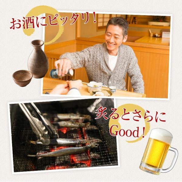 おつまみ 送料無料 ししゃも 寒干し 北海道産 50g 珍味 無添加|hokkaimaru|05
