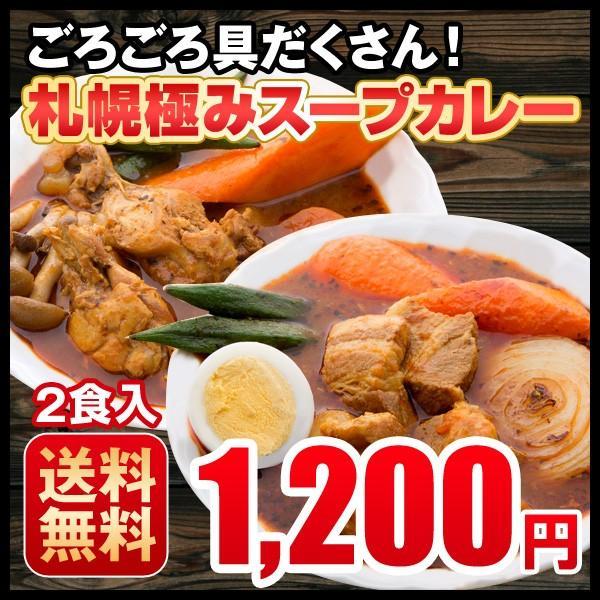 スープカレー 送料無料 札幌スープカレー 2食セット チキン 豚角煮 2種類 選べる ハバネロスパイスが無料付 北海道 スパイス レトルト
