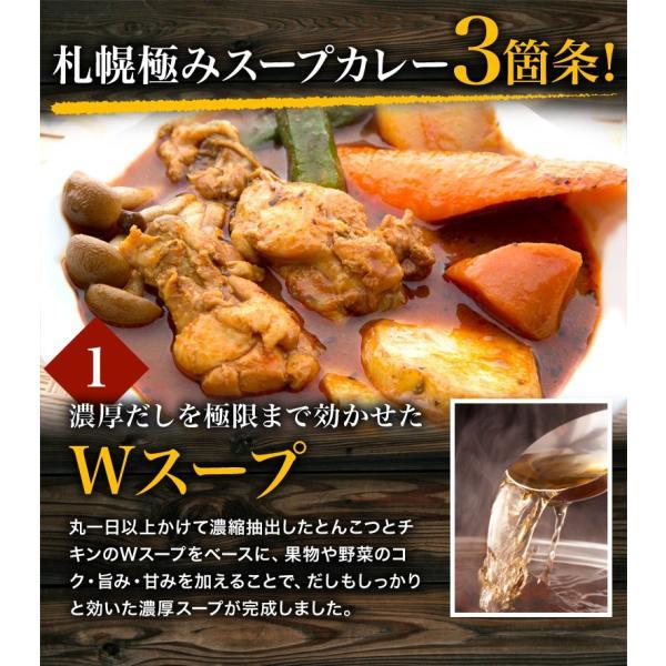 カレー 送料無料 札幌スープカレー 2食セット チキン 豚角煮 2種類 選べる ハバネロスパイスが無料付 北海道 スパイス レトルト|hokkaimaru|11