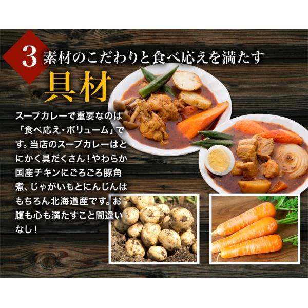 カレー 送料無料 札幌スープカレー 2食セット チキン 豚角煮 2種類 選べる ハバネロスパイスが無料付 北海道 スパイス レトルト|hokkaimaru|13