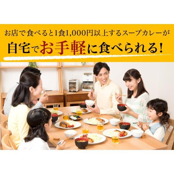 カレー 送料無料 札幌スープカレー 2食セット チキン 豚角煮 2種類 選べる ハバネロスパイスが無料付 北海道 スパイス レトルト|hokkaimaru|15