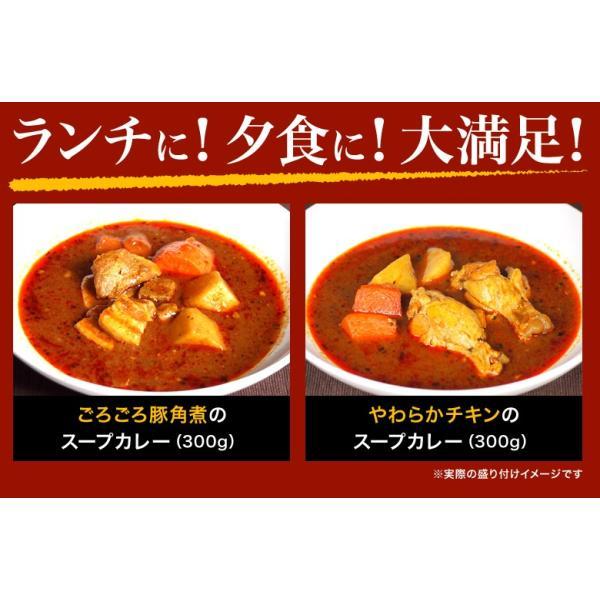 カレー 送料無料 札幌スープカレー 2食セット チキン 豚角煮 2種類 選べる ハバネロスパイスが無料付 北海道 スパイス レトルト|hokkaimaru|16