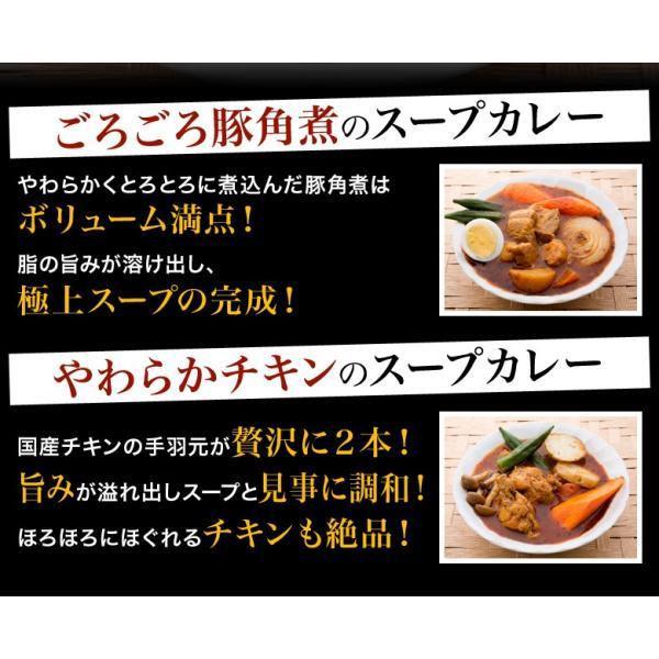 カレー 送料無料 札幌スープカレー 2食セット チキン 豚角煮 2種類 選べる ハバネロスパイスが無料付 北海道 スパイス レトルト|hokkaimaru|08