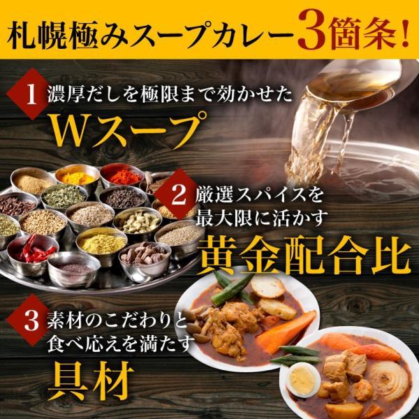 カレー 送料無料 札幌スープカレー 2食セット チキン 豚角煮 2種類 選べる ハバネロスパイスが無料付 北海道 スパイス レトルト|hokkaimaru|10