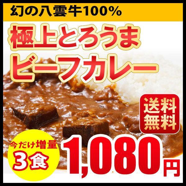 ポイント消化 ビーフカレー レトルトカレー 3食セット 北海道 札幌 1000円ポッキリ 送料無料|hokkaimaru