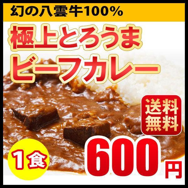 ポイント消化 ビーフカレー レトルトカレー 1食 北海道 札幌 500円ポッキリ