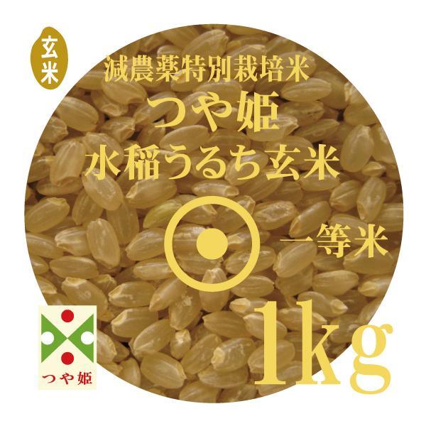 お試し玄米 令和2年産 つや姫 1kg 山形県産 減農薬 特別栽培米 玄米 一等米 メール便 送料無料