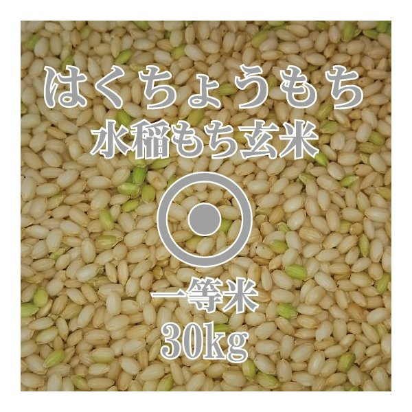 令和2年産 はくちょうもち 30kg 玄米 一等米 北海道米 糯米 もち米