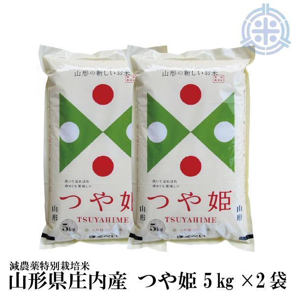 令和2年産 つや姫 10kg 送料無料 (5kg×2袋) 白米 減農薬特別栽培米 真空パック対応 特A
