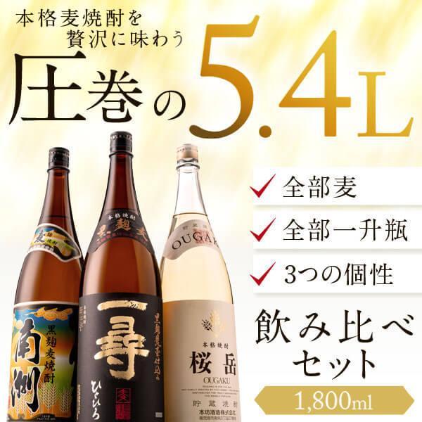 麦焼酎 焼酎セット 麦焼酎/桜岳 一尋 南洲|hombo|02