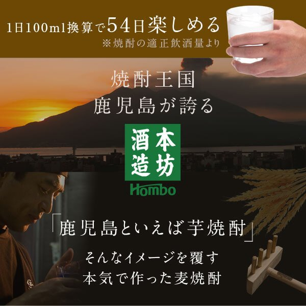 麦焼酎 焼酎セット 麦焼酎/桜岳 一尋 南洲|hombo|03