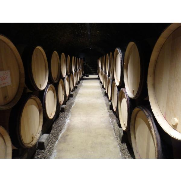 フランスワイン ブルゴーニュ 白ワイン ムルソー Clos du Cromin 2015年 コート ド ボーヌ村名クラス ルペ ショーレ社 送料無料|homekitchenonline|06