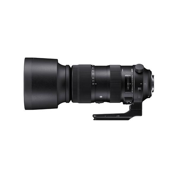 シグマ AF 60-600mm F4.5-6.3 DG OS HSM (S) キヤノン用 超望遠レンズ (メール便不可)