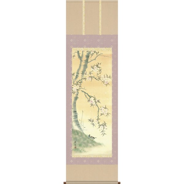 掛軸 掛け軸-桜花/高見蘭石 花鳥画掛軸送料無料(尺五 桐箱 緞子)床の間 和室 おしゃれ モダン ギフト つるす 飾る