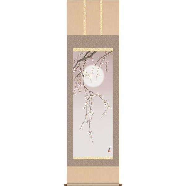 掛軸 掛け軸-夜桜/清水玄澄 花鳥掛軸送料無料(尺三 化粧箱)春用掛け軸 床の間 和室 オシャレ モダン ギフト つるす 飾る