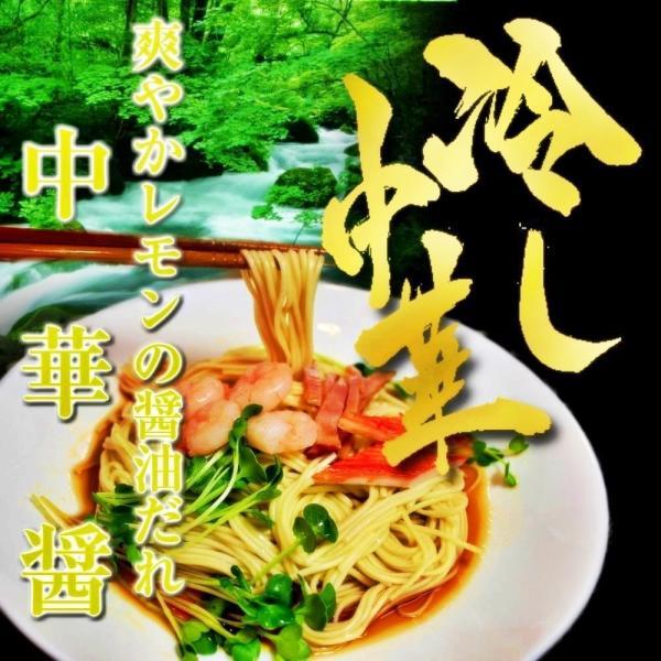 冷やし中華 お取り寄せ 特製 中華醤だれ 冷し中華 6人前セット レモン風味 冷しゃぶ風 豚肉 新鮮野菜 相性抜群 冷麺 涼麺 お試しグルメギフト