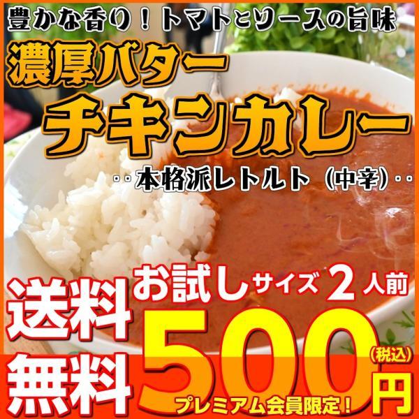 カレー レトルト バターチキンカレー 会員価格500円 濃厚ソース 鶏肉旨味 トマト酸味 2人前セット お取り寄せ メール便商品 お試しグルメギフト