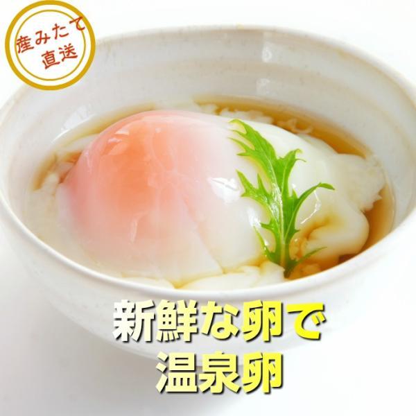 ほんだ農場の卵 たまご 玉子 大寒の卵