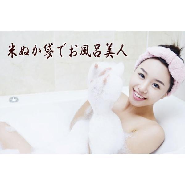 (送料無料)自然の恵み焙煎米ぬか「素肌美人」100gメール便 hondanojo 05