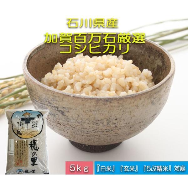令和3年産 新米 加賀百万石 お米 こしひかり 厳選コシヒカリ 石川県産   食用 玄米 5kg