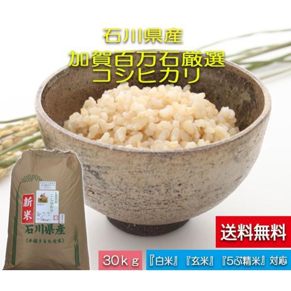 令和3年産 新米 加賀百万石 お米 こしひかり 厳選コシヒカリ 石川県産  食用 玄米 30kg
