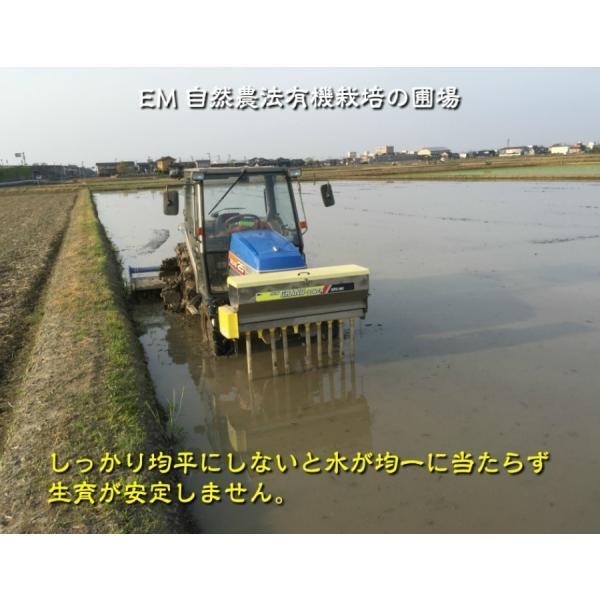 お米 玄米 白米 無洗米 無農薬 有機米ができるまでEM自然農法 代掻き作業
