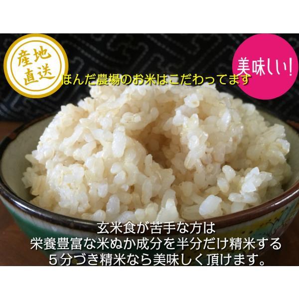 無農薬 白米でも玄米でも5分づき精米でも無洗米でも対応