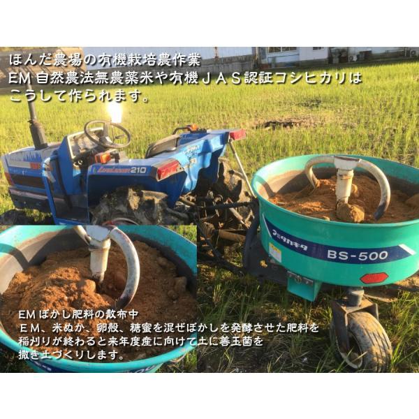 お米 玄米 白米 無洗米 無農薬 有機米ができるまでEM自然農法 EMぼかし散布