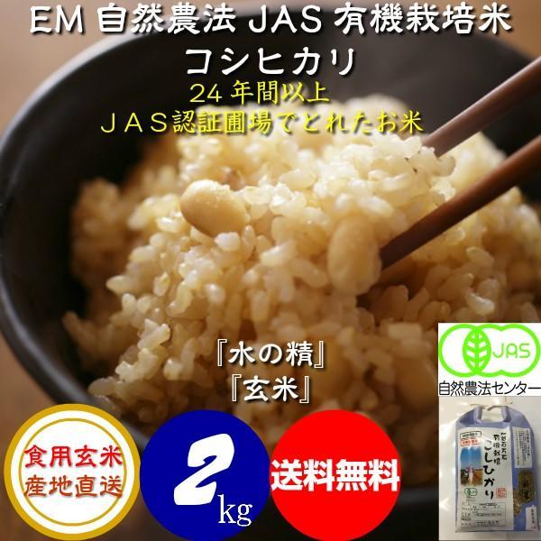 令和3年産 新米 無農薬 有機米 コシヒカリ 食用玄米 2kg 水の精 JAS認証 EM自然農法