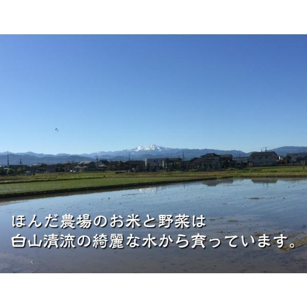 霊峰白山からのきれいな水と無農薬で育てた有機栽培米