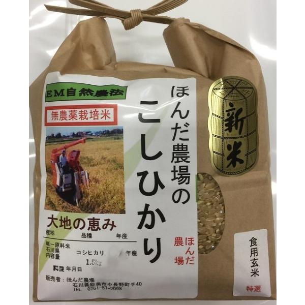 令和3年産 新米 無農薬栽培栽培米 こしひかり 玄米 1,5kg   自然農法  「大地の恵」米