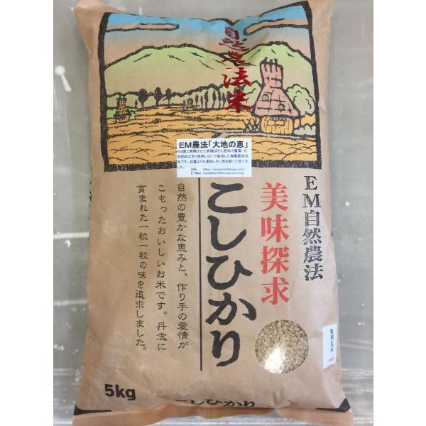 令和3年産 新米 無農薬栽培米 こしひかり 玄米 5kg 「大地の恵」 コシヒカリ お米  自然農法 米