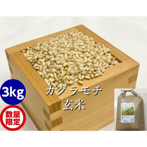 カグラもち玄米3kg