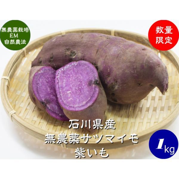無農薬 EM農法 わけあり 紫いも(さつまいも)1袋1kg サツマイモ