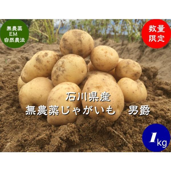 無農薬ジャガイモ、男爵1kg