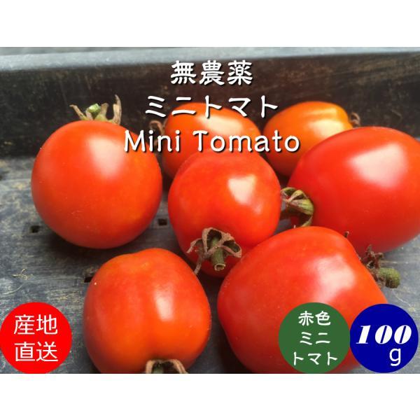 無農薬完熟薄皮ミニトマトピンキー赤(100g)