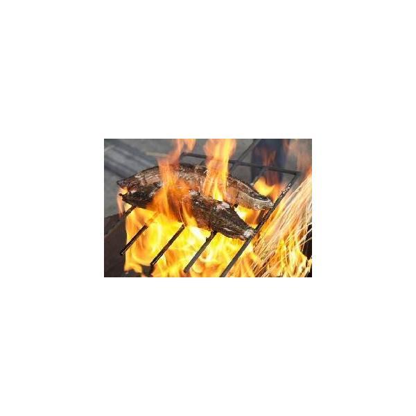 無農薬米 有機栽培米 稲藁 300g「約1束」 [稲藁、稲わら、稲ワラ、わら、藁、籾殻、もみ殻、等販売]「無農薬」家庭菜園 野菜作り|hondanojo|06