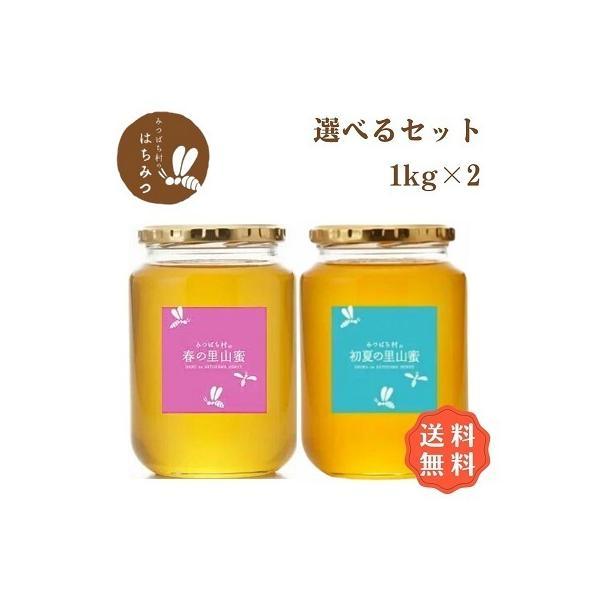 はちみつ 国産 純粋 非加熱 はちみつ1kg2本お得セット 生産直売 岐阜県産 国産蜂蜜