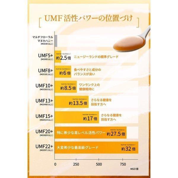7月中旬発送予定 プレミアムマヌカハニー  UMF5+ はちみつ 送料無料 MGO83以上  初めての方に最適 honeygreenbay 10