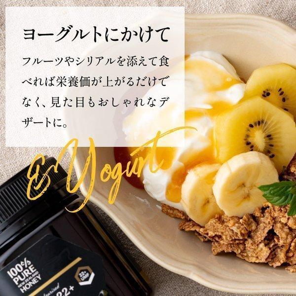 7月中旬発送予定 プレミアムマヌカハニー  UMF5+ はちみつ 送料無料 MGO83以上  初めての方に最適 honeygreenbay 13